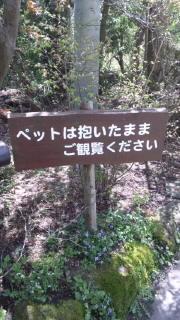 今、箱根いいです(o^-')b
