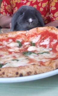 1文字とpizza
